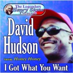 David Hudson I Got What You Want
